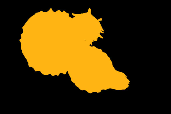 Yellow promo image
